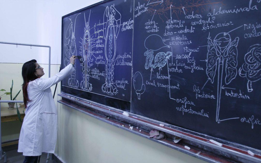 Démocratiser la biologie grâce aux dispositifs interactifs